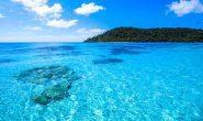 อนุรักษ์ทะเลไทย ทำยังไงได้บ้าง
